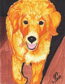 samantha--puppy